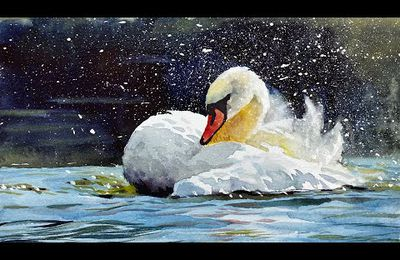 cygne à l'aquarelle - Yong Chen