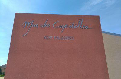 Le Mas des Capitelles a 20 ans !!!
