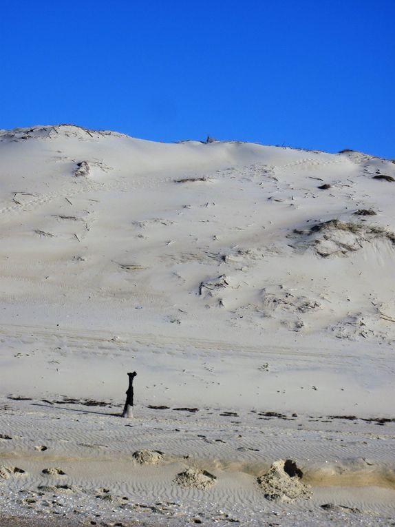 Photos touristiques autour de Lège Cpa Ferret