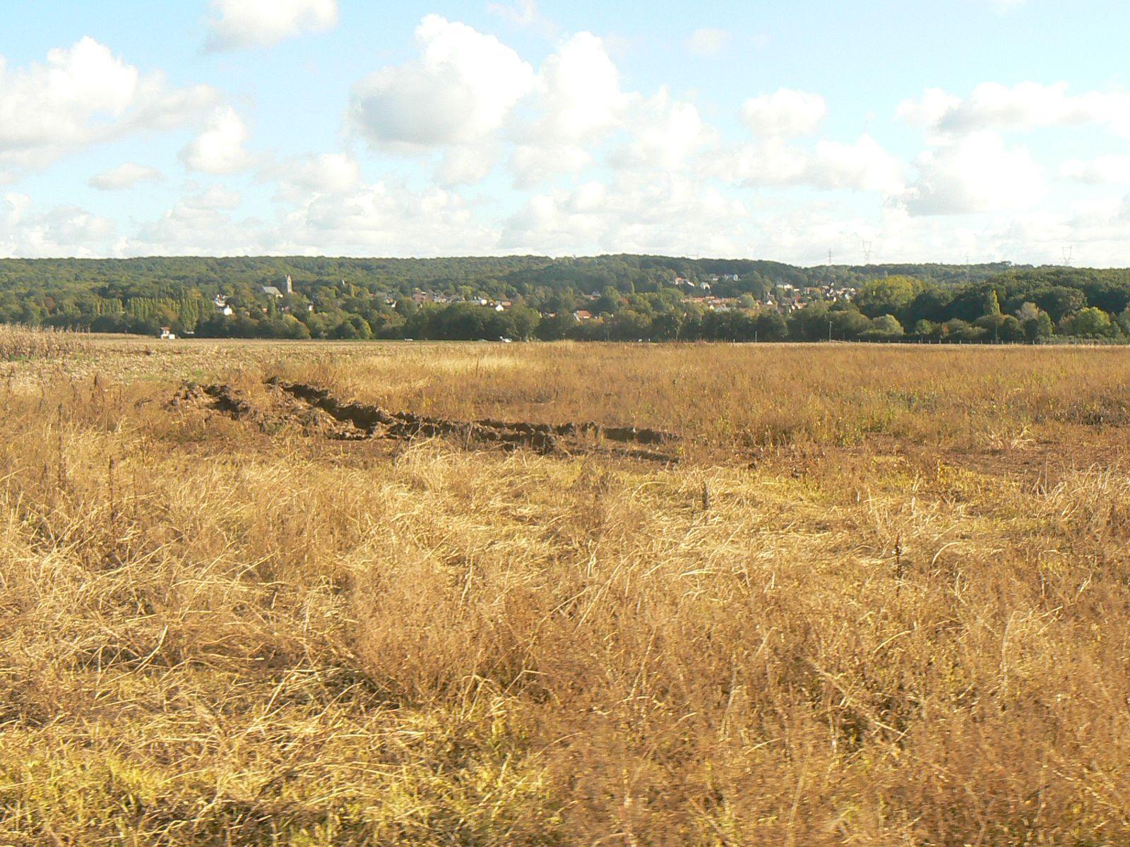 D'Angervilliers à Briis sous Forges (91): samedi 10 octobre