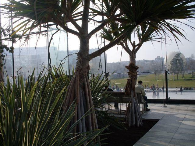 Visite en photos de la serre australienne du parc Citroën