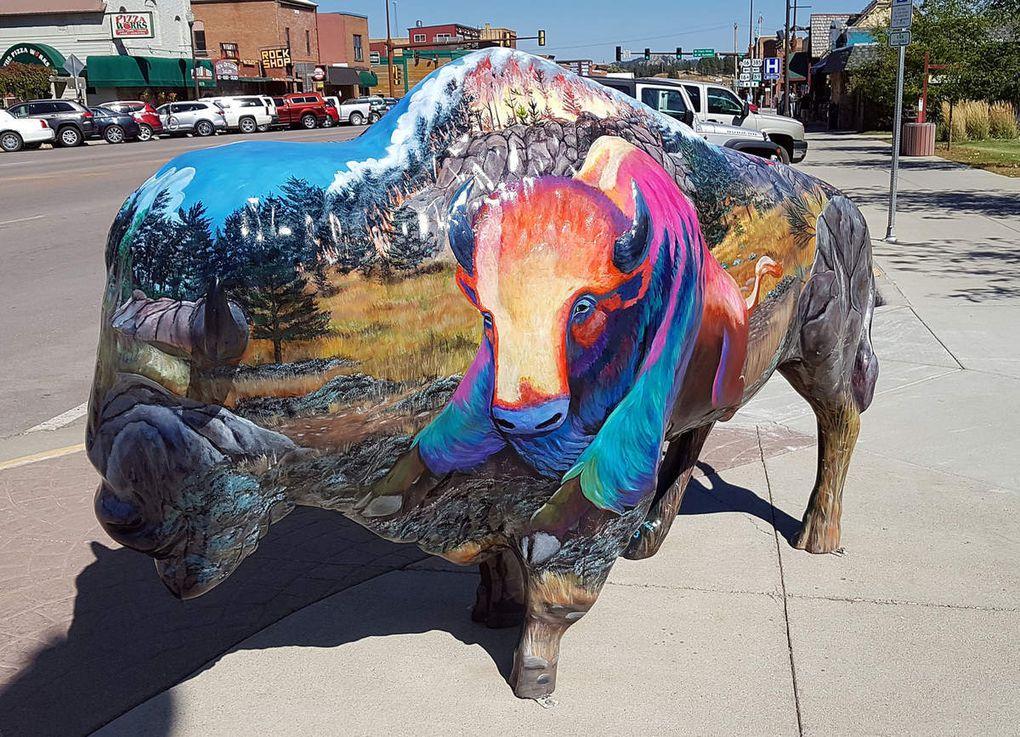 Diaporama les bisons de Custer