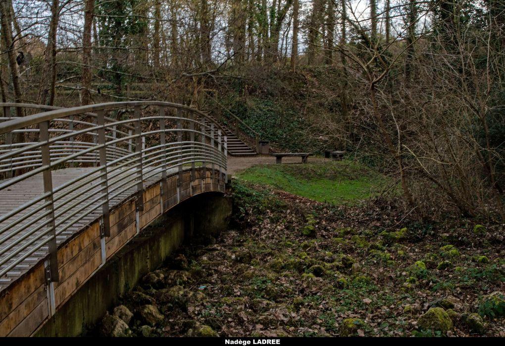 Petit étang au sein du village d'Elancourt. Petite promenade agréable
