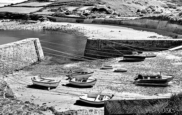 Port Racine en noir & blanc