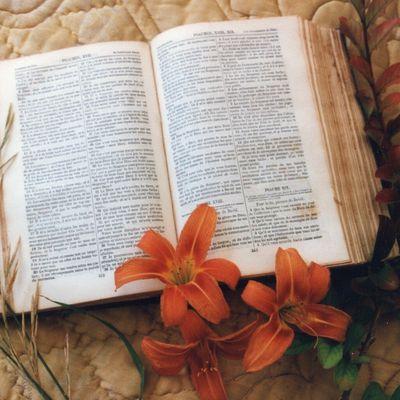 NOURRIR SON ÊTRE INTÉRIEUR EN ÉCOUTANT ET MÉDITANT LES PSAUMES