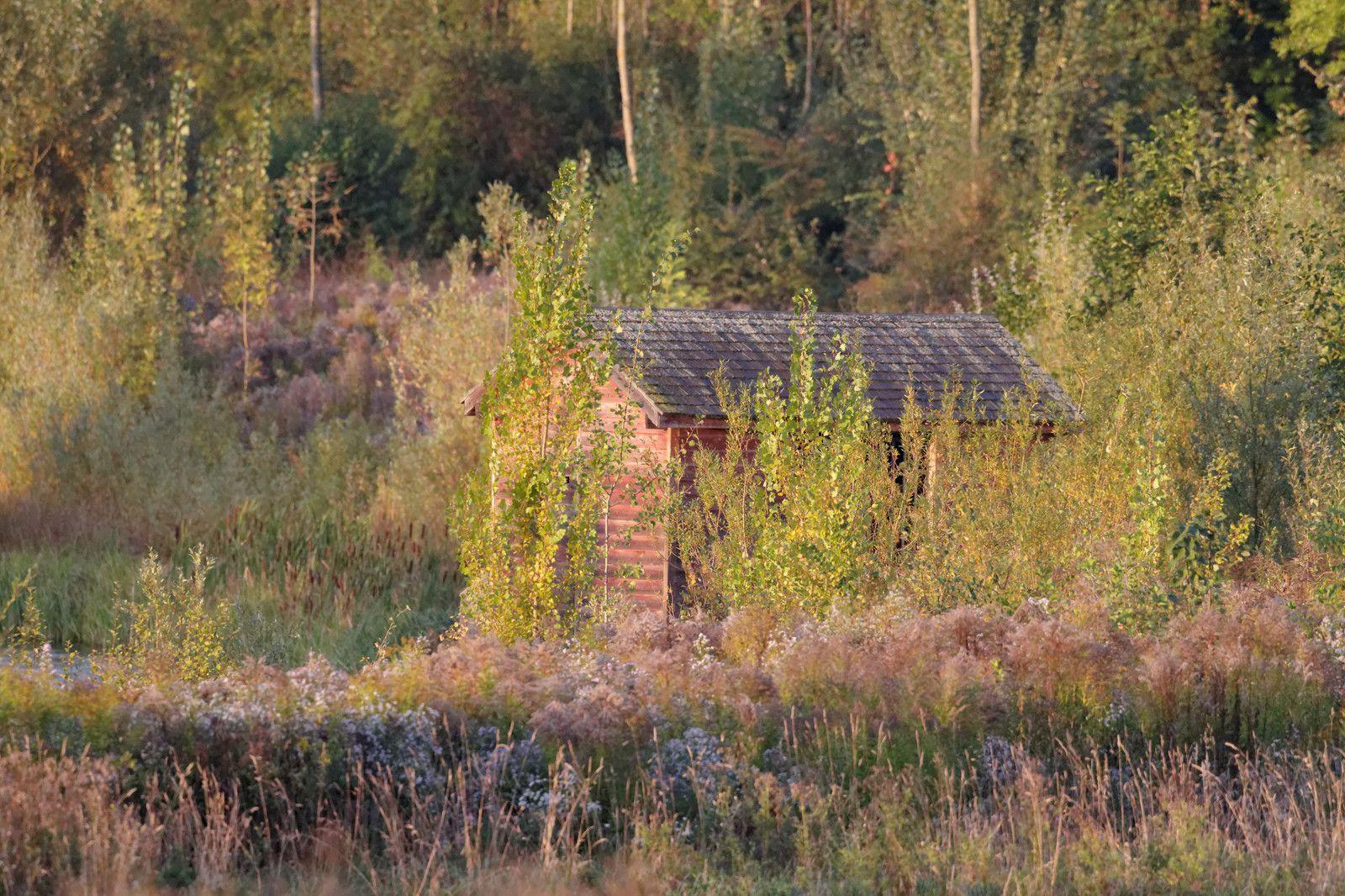25 - L'automne à la Haute-Île : 06/10/2012
