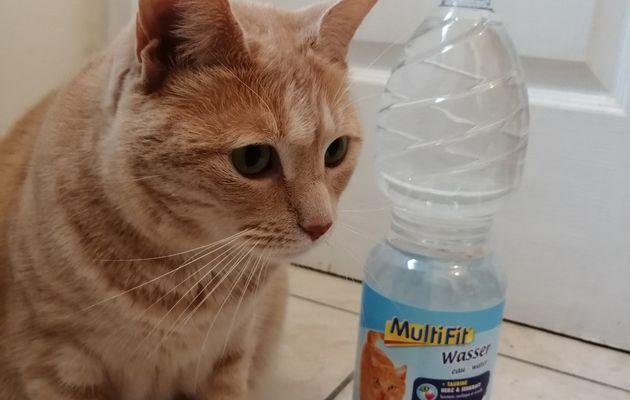 Oliver a testé l'eau minérale MultiFit