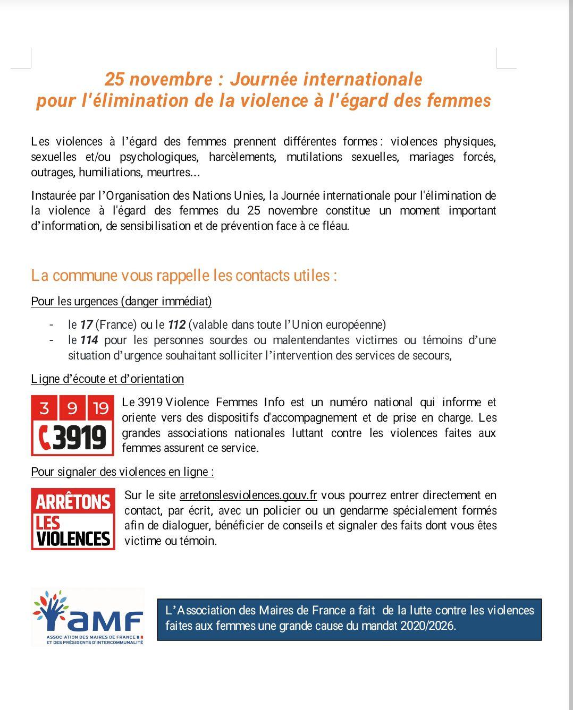 Journée internationale pour l'élimination de la violence à l'égard des femmes 25 novembre