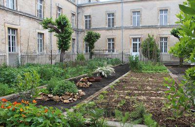 Jardins cachés