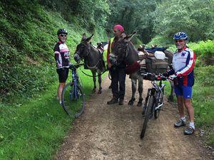 Le randonneur au long cours et ses ânes.