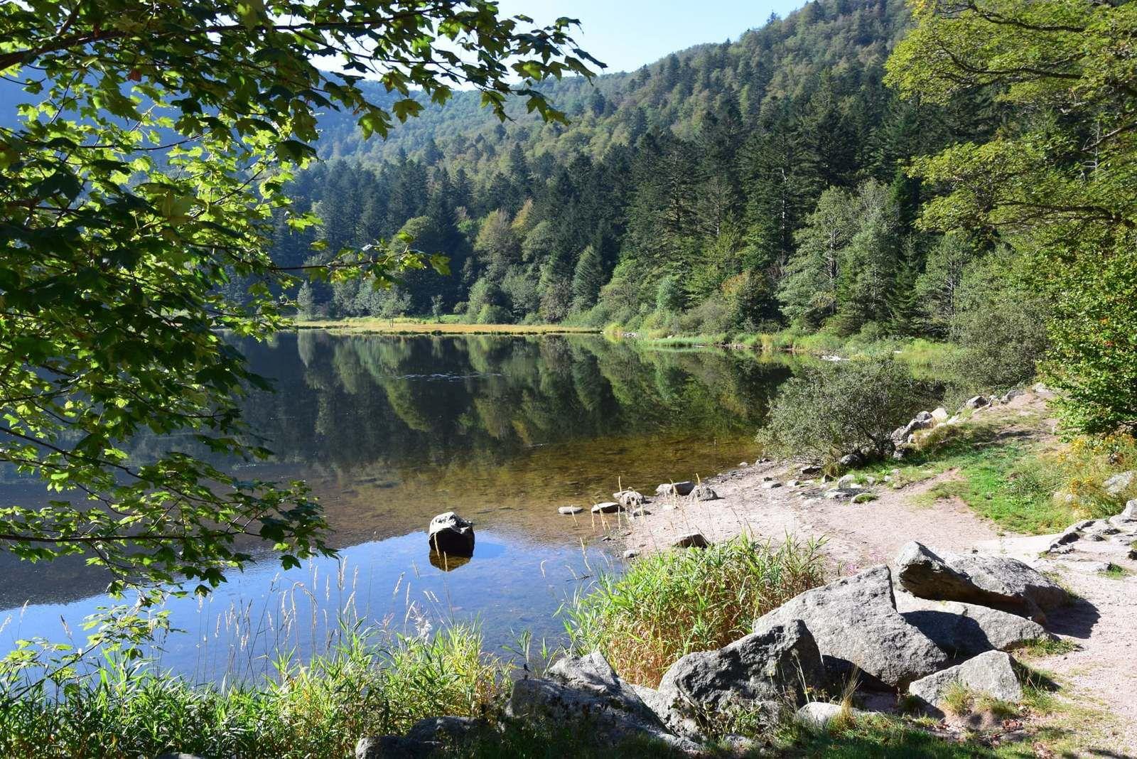Le lac de Blanchemer, un matin d'été