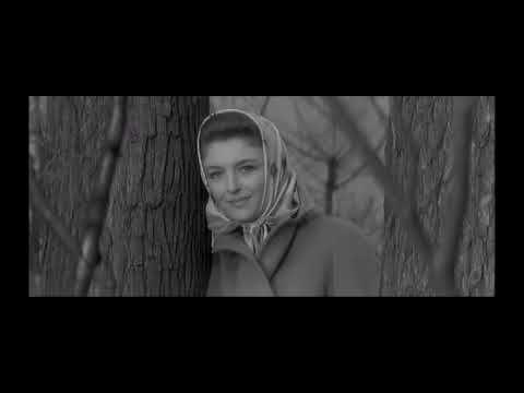 LES DIMANCHES de VILLE d'AVRAY de SERGE BOURGUIGNON