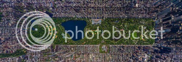 Magnifique photo de Central Park