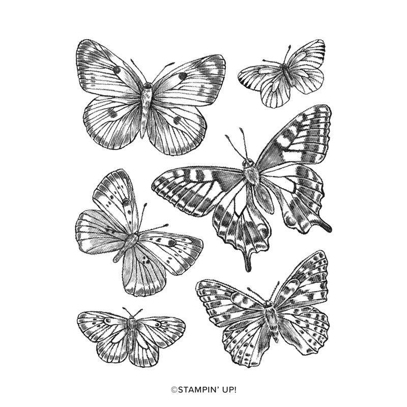 """SU """"Bouquet de papillons""""."""