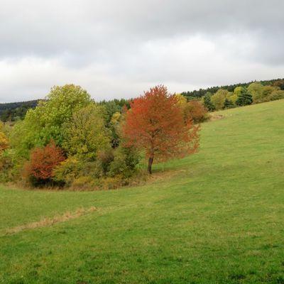 Couleurs d'automne en Haute-Loire