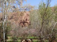 Gorges du Dadès (Maroc en camping-car)
