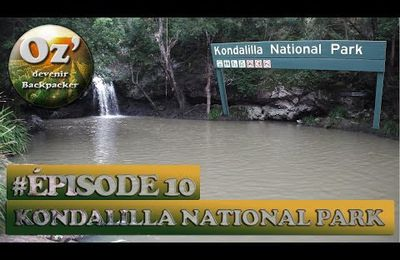 #Episode 10 - Kondalilla National Park