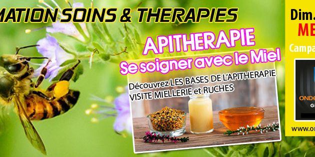 """FORMATION THERAPIE : """"Découverte de l'APITHETAPIE, soigner avec le miel"""" Dim 20 Aout à Metz Nord"""