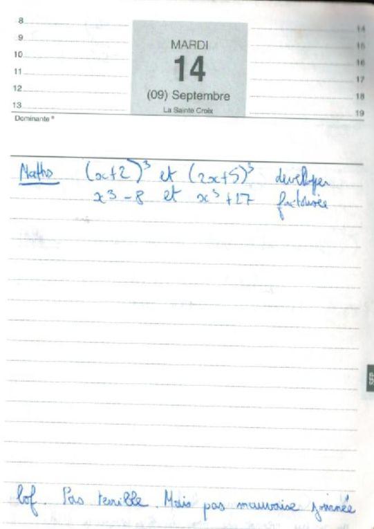 Quoi, vous n'avez jamais regardé dans l'agenda de votre voisin en classe, vous ? Les agendas du Petit Nicolas mais en Plus Grand - 1999 2000