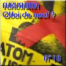 FUKUSHIMA - 11 avril 2011 - Quoi de neuf N°18 - Dernières nouvelles - NATURE(S)