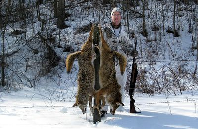 Top 5 Scopes for Coyote Hunting