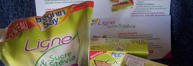 Flan parisien au sucre & aux extraits de stévia