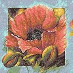 Poppy art photo stitch free embroidery design 3