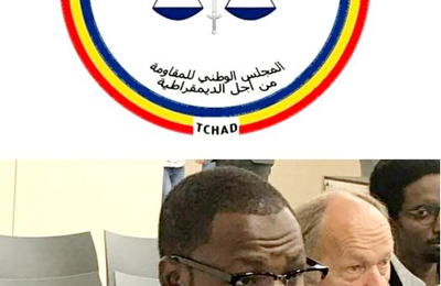 Genève: le CNRD lance un appel aux ong internationales d'intercéder au Tchad