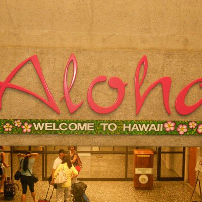 Aloha Pictures☼