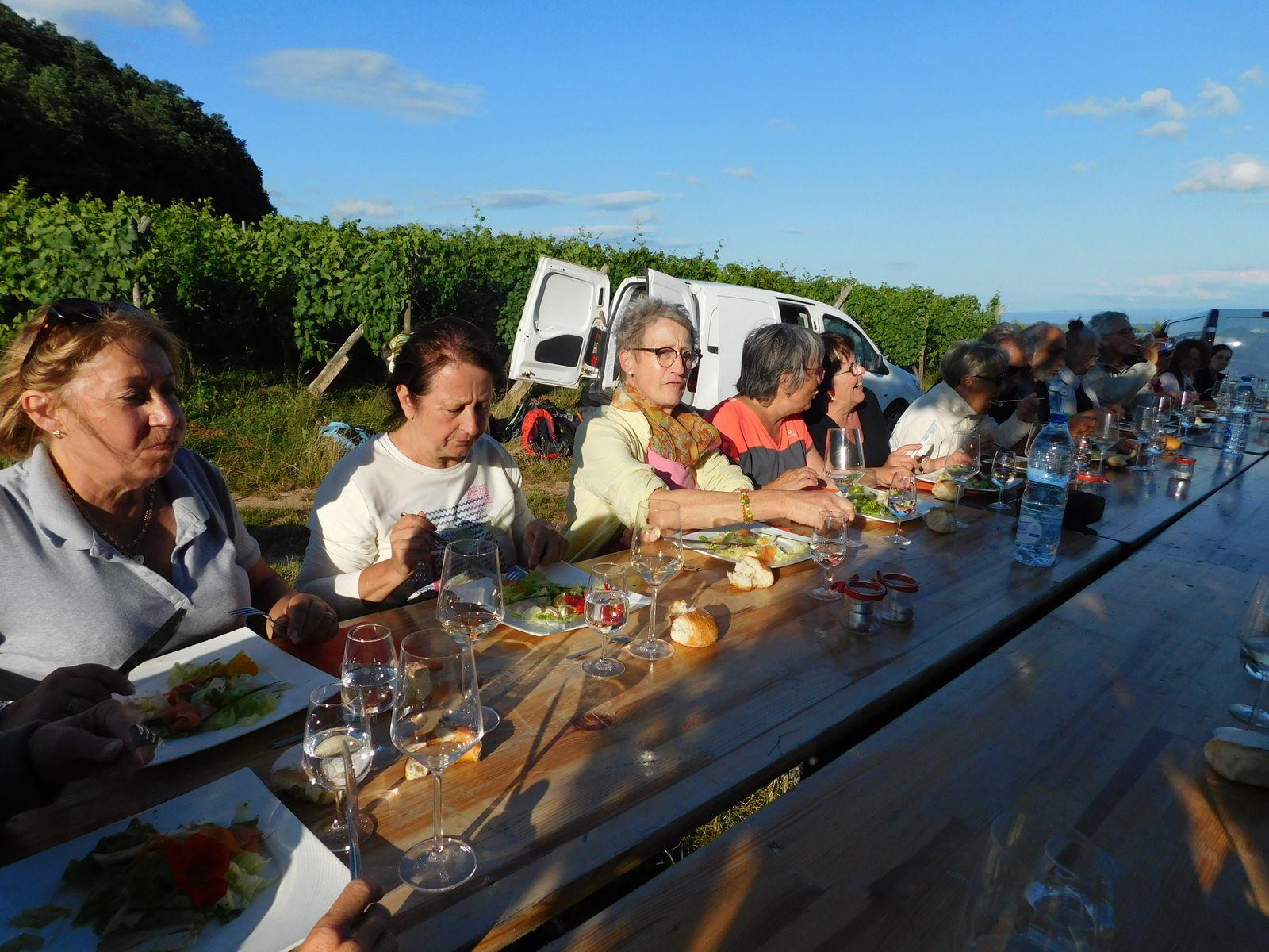 Magnifique soirée dans les vignes avec le beau temps Merci Odile pour cette belle réusite           db