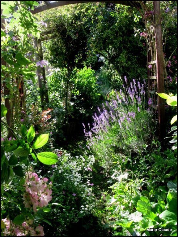 Petits chemins du jardin,