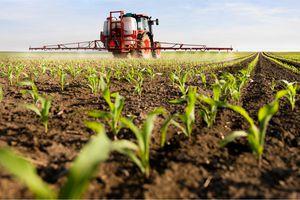 Une étude révèle une quantité croissante de microplastiques dans les terres agricoles