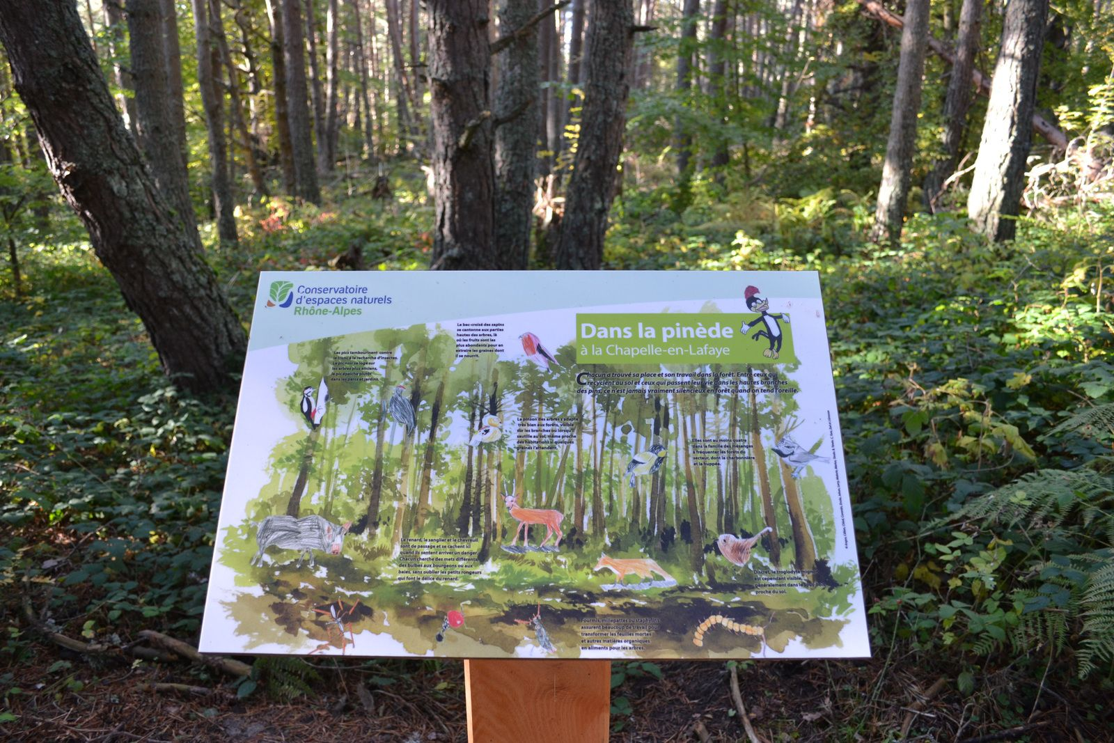 Le sentier botanique de La Chapelle-en-Lafaye...