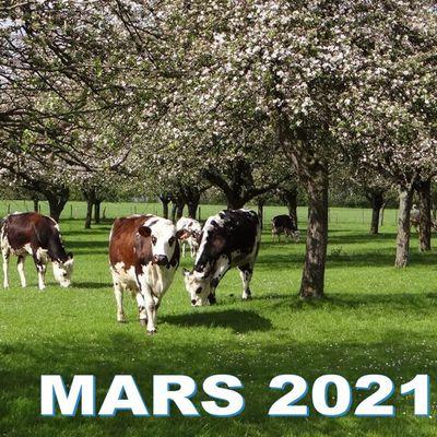 PROGRAMME MARS 2021