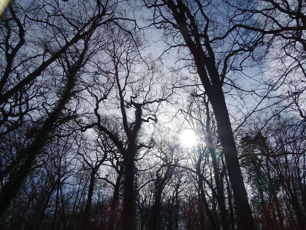 Escapade à la poudrerie de Sevran-Livry (93)