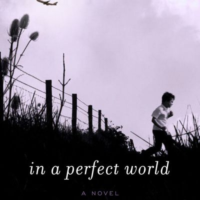 Laura Kasische : In a perfect world