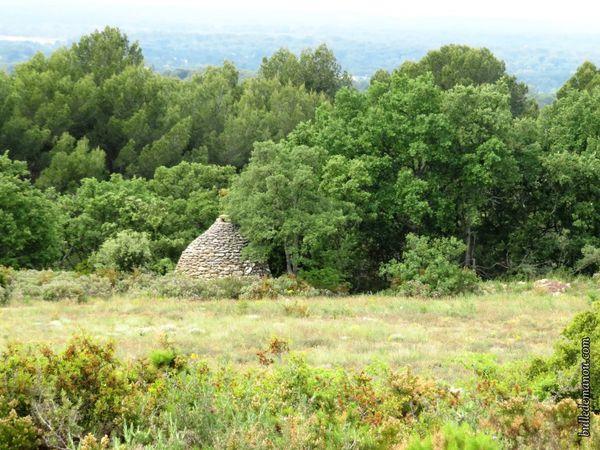 La borie dans la campagne de Saint-Cannat