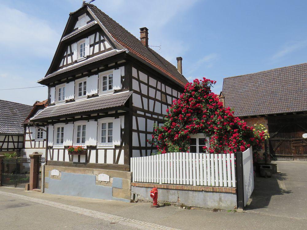 """HUNSPACH """"Un des plus beaux villages de France"""", paisible et très authentique"""