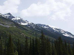 Road trip in the Canadian Rockies... Here is Roger's Pass at 1330m
