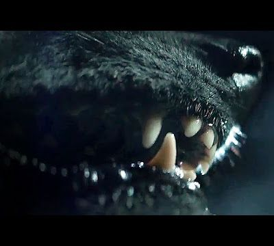 Watch The Pack Full Movie Online