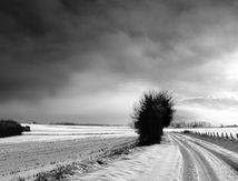 Noir et blanc d'1 semaine de neige dans la Manche