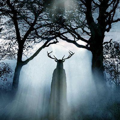 Dans les parages de Cernunnos. La symbolique du cerf en Europe celtique et gallo-romaine (fin)