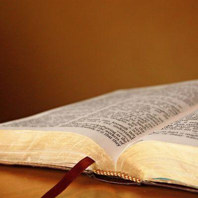 Verset du jour - 363 - verse of the day
