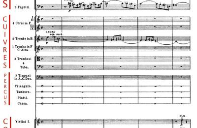Réflexion par temps de Covid (5) : Musique et diversité.