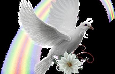 Coucours - Agissons pour la Paix
