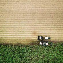 Une guerre inutile contre le glyphosate met l'agriculture durable en péril