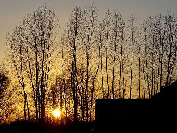 Ciel de fin de journée - 4 photos