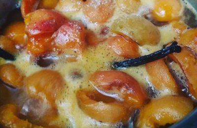 Compotée d'abricots au sucre Muscovado et à la vanille équitable .