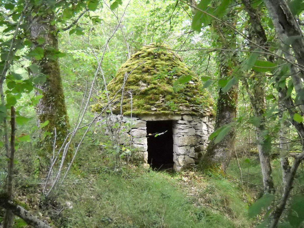 Une borie sur les tertres de la commune de Pontours (Dordogne) en lisière du forêt, aux limites des anciennes parcelles cultivées.  (© Ph.B.S.)
