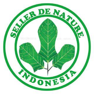 Urutan Cara Pemesanan Obat Herbal De Nature Indonesia Asli